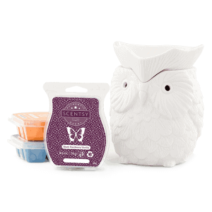 Scentsy System $54 Warmer