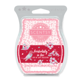 Accidentally in Love Scentsy Bar