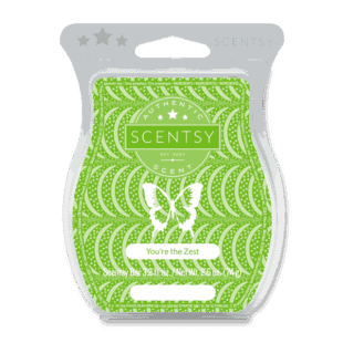 You're the Zest Scentsy Bar
