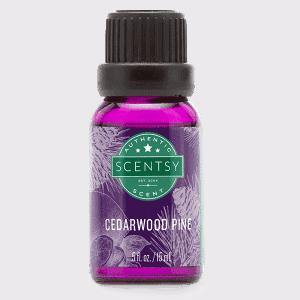 Cedarwood Pine Natural Oil Blend