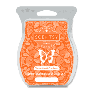 Clementine & Cranberry Scentsy Bar