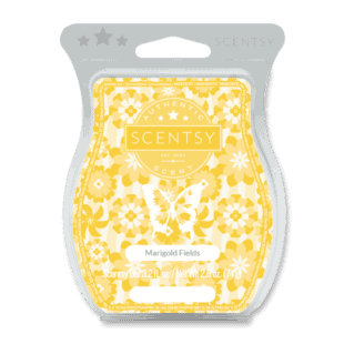 Marigold Fields Scentsy Bar