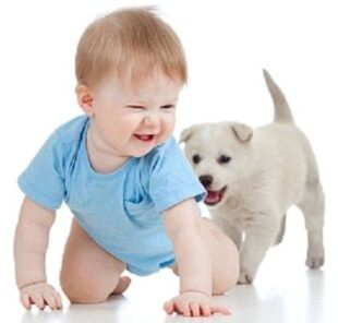 baby-boy-and-puppy_0