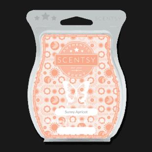 Sunny Apricot Scentsy Bar