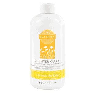 Squeeze the Day Counter Clean