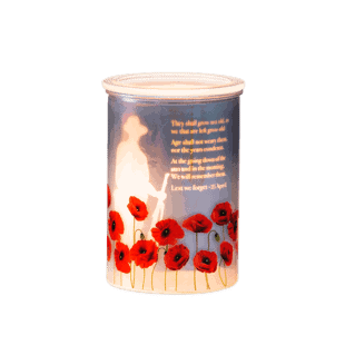 Lest We Forget - Scentsy Warmer